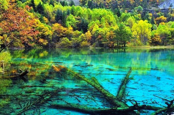 Du ngoạn những vùng biển hồ