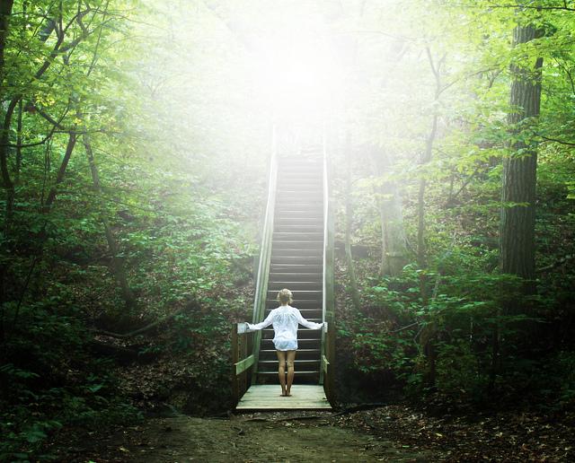 Đôi khi dừng lại là bước đi khôn ngoan