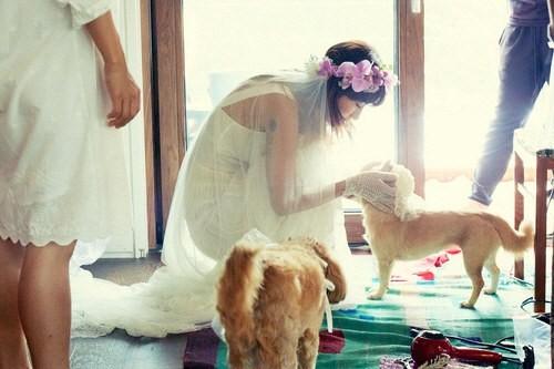 Tiết lộ ảnh cưới đáng yêu của Lee Hyori 5