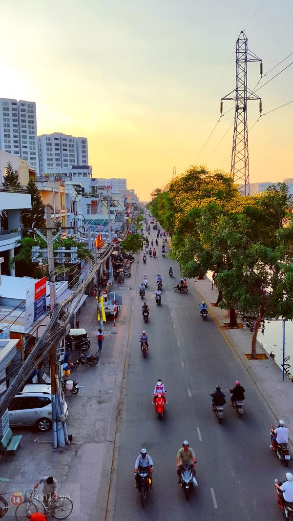 Sài Gòn đẹp rực rỡ những cánh hoa điệp vàng trái mùa 20