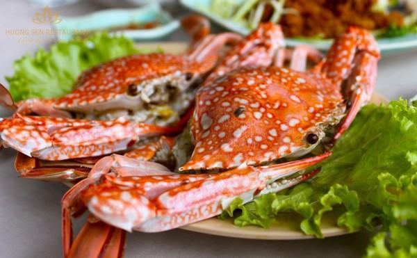6 đặc sản tuyệt ngon của biển Cửa Lò 2