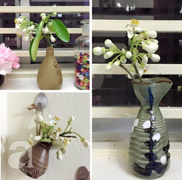 Hà Nội dịu dàng hương hoa bưởi tháng 3 5