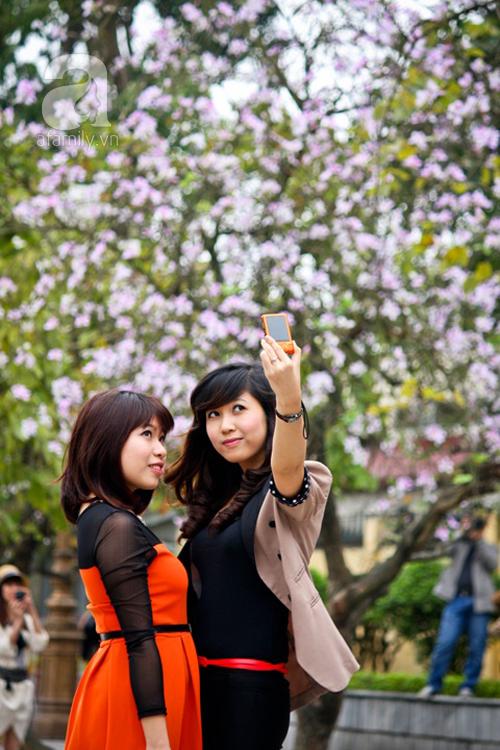 Hoa ban nở rộ đẹp nao lòng, giới trẻ Hà Thành nô nức chụp hình 9