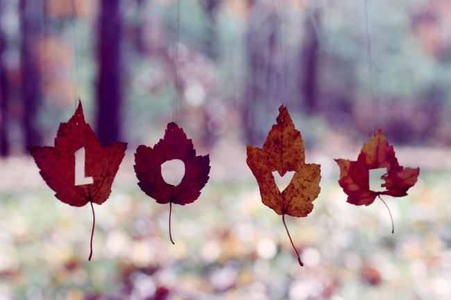 Bởi tình yêu chưa bao giờ là thứ để khoe khoang