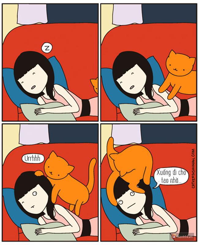 Bộ tranh: Chỉ những ai nuôi mèo mới có thể hiểu sâu sắc những tình cảnh này - Ảnh 19.