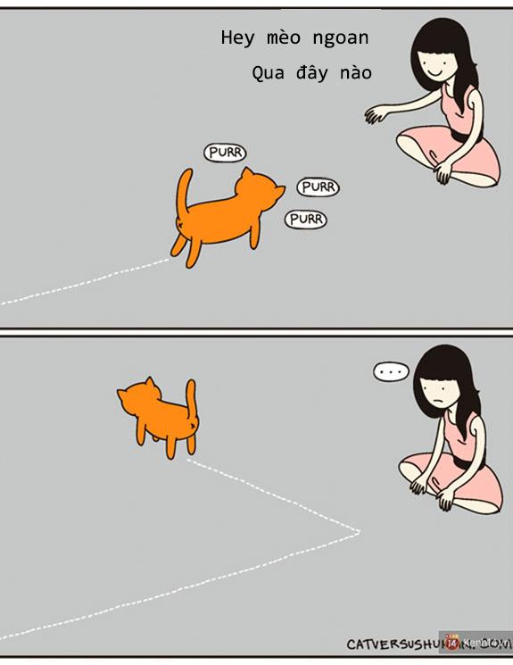 Bộ tranh: Chỉ những ai nuôi mèo mới có thể hiểu sâu sắc những tình cảnh này - Ảnh 5.