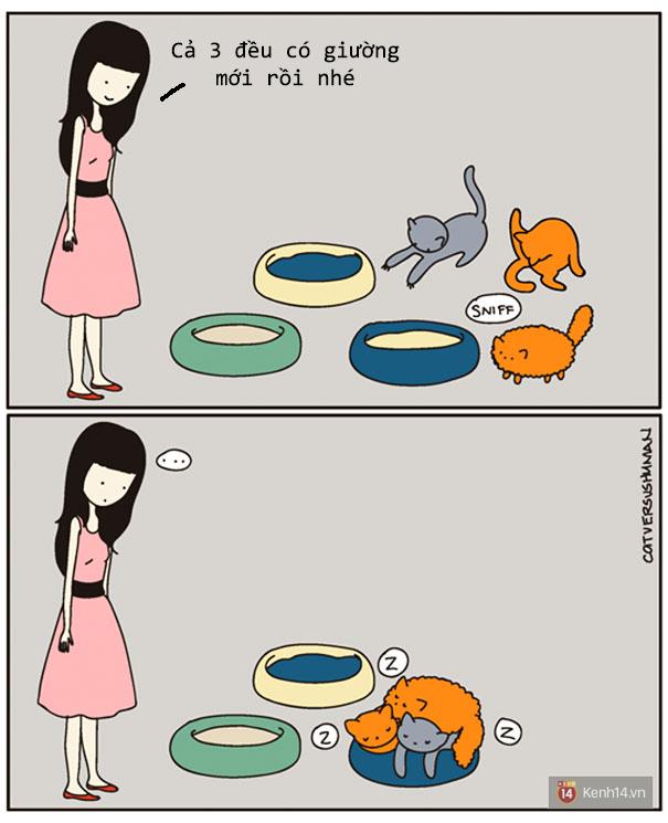 Bộ tranh: Chỉ những ai nuôi mèo mới có thể hiểu sâu sắc những tình cảnh này - Ảnh 4.