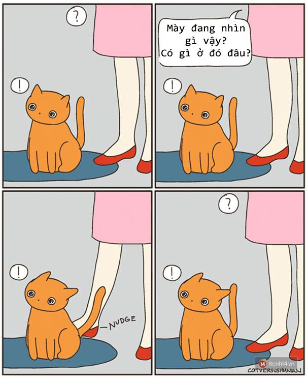 Bộ tranh: Chỉ những ai nuôi mèo mới có thể hiểu sâu sắc những tình cảnh này - Ảnh 9.