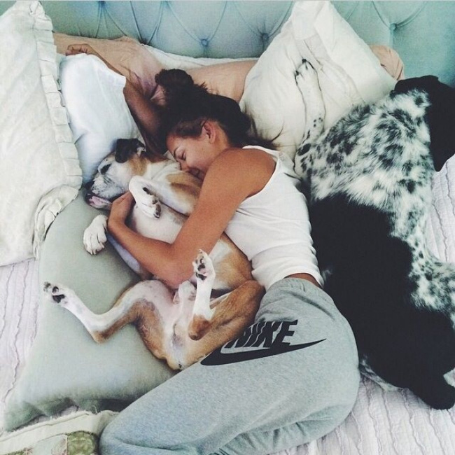 14 lý do chứng minh người yêu có thể không có nhưng chó nhất định phải có một con - Ảnh 2.