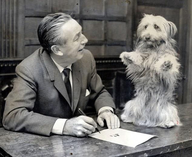 Chú chó trung thành ngồi đợi chủ suốt 1 tuần ngoài cổng bệnh viện - Ảnh 3.