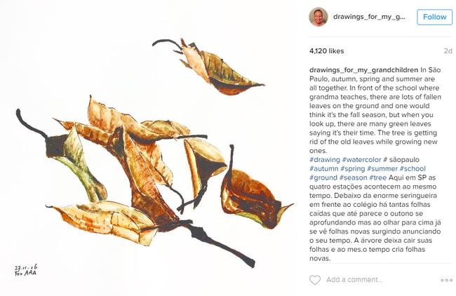 Những bức vẽ ông dành cho các cháu: Câu chuyện cảm động chạm đến trái tim hàng triệu người trên Instagram - Ảnh 6.