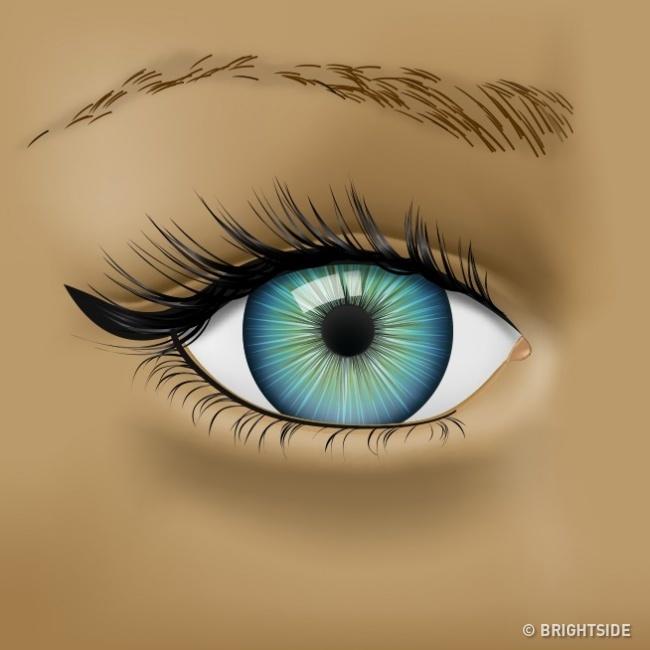 Mắt có các biểu hiện này thì nên đi khám sức khỏe ngay! - Ảnh 2.