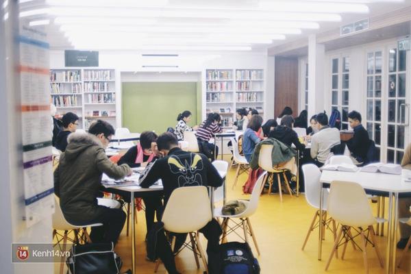 4 thư viện cực đẹp, cực xịn dành riêng cho dân yêu ngoại ngữ ở Hà Nội - Ảnh 1.