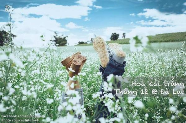 mùa hoa việt nam