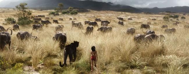 10 bí mật động trời của siêu phẩm The Jungle Book - Ảnh 11.