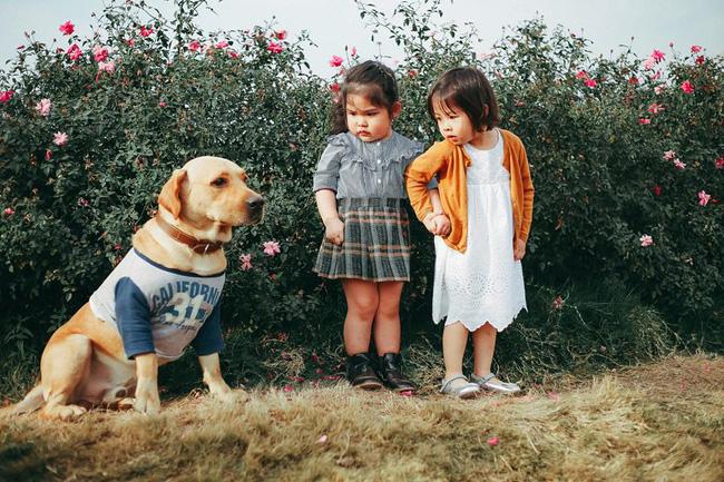 """Khuôn mặt sợ chó siêu đáng yêu của cô bé má phính Hà Nội """"ăn đứt"""" Vô Diện lạnh lùng"""