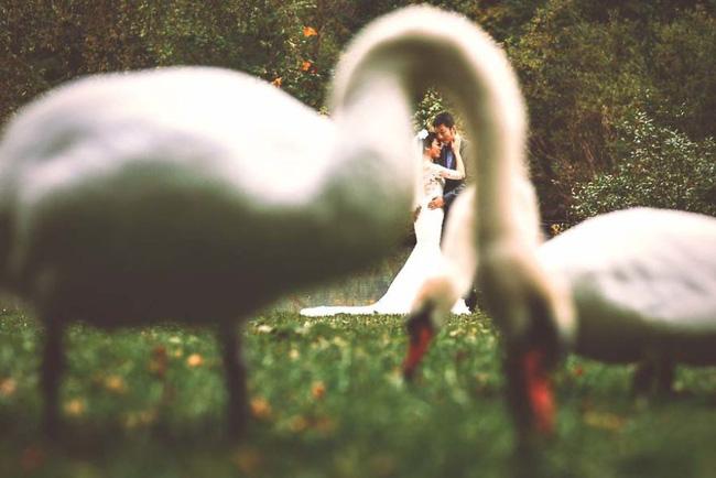 15 bức ảnh khiến bạn muốn cưới ngay lập tức - Ảnh 1.