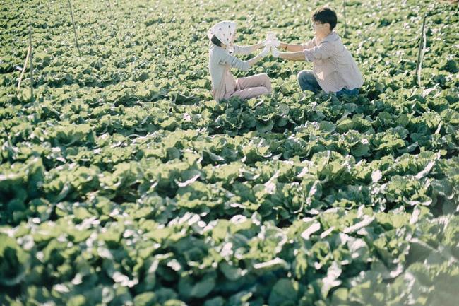 Chỉ cần yêu nhau thật nhiều thì ảnh cưới chụp ở... vườn rau cũng khiến người ta xuýt xoa - Ảnh 10.