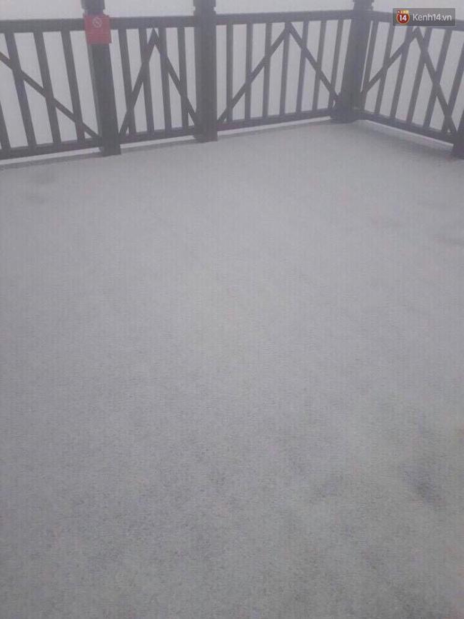 Điều bất ngờ cuối đông: Tuyết rơi trên đỉnh Fansipan - Ảnh 5.