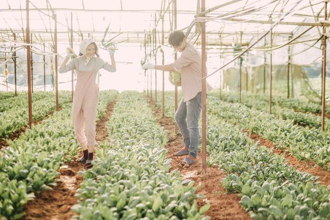 Chỉ cần yêu nhau thật nhiều thì ảnh cưới chụp ở... vườn rau cũng khiến người ta xuýt xoa - Ảnh 6.