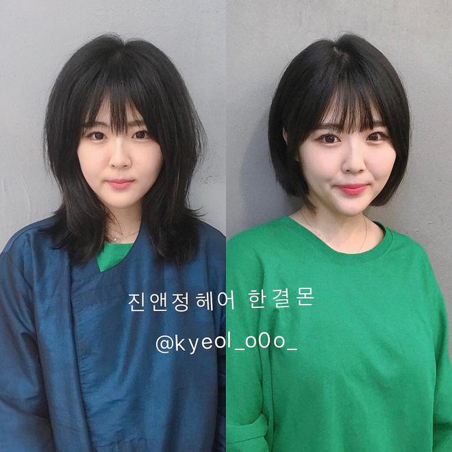 15 bức ảnh before/after khiến bạn chỉ muốn bay ngay sang Hàn để làm tóc15 bức ảnh khiến bạn chỉ muốn bay ngay sang Hàn Quốc để làm tóc - Ảnh 12.
