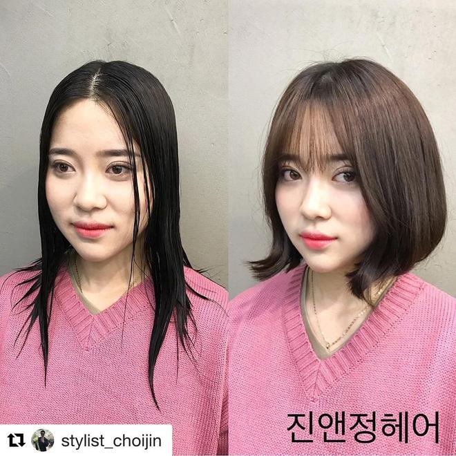 15 bức ảnh before/after khiến bạn chỉ muốn bay ngay sang Hàn để làm tóc15 bức ảnh khiến bạn chỉ muốn bay ngay sang Hàn Quốc để làm tóc - Ảnh 2.