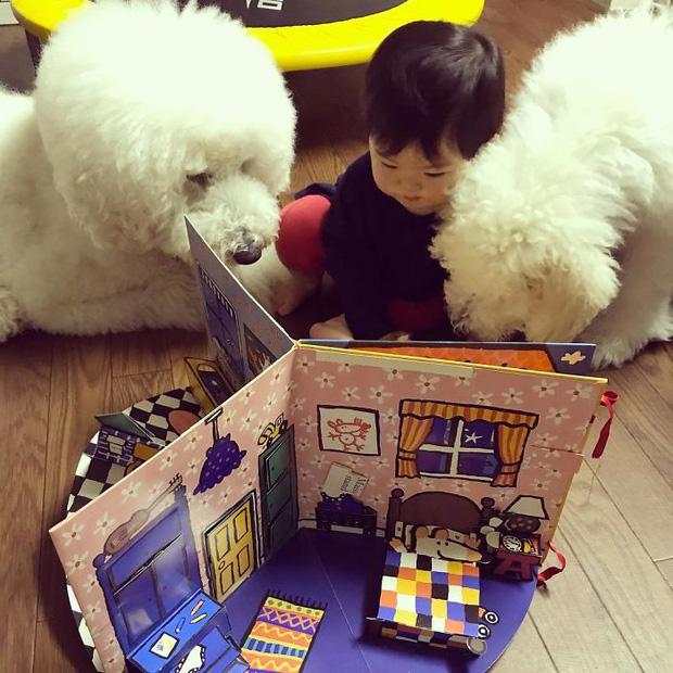 Ngắm nhìn tình bạn đáng yêu của bé gái và chú chó poodle - Ảnh 7.