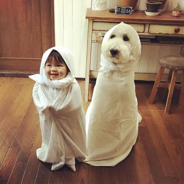 Ngắm nhìn tình bạn đáng yêu của bé gái và chú chó poodle - Ảnh 1.