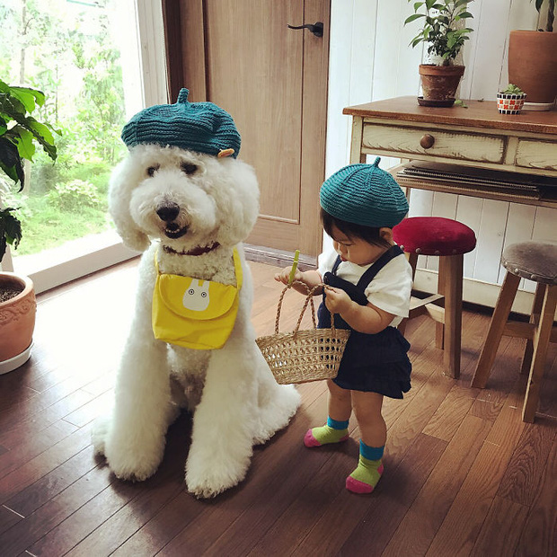 Ngắm nhìn tình bạn đáng yêu của bé gái và chú chó poodle - Ảnh 21.