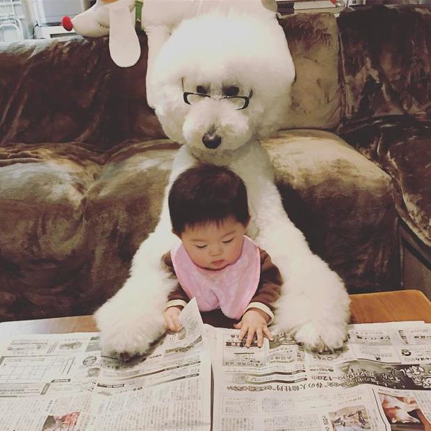 Ngắm nhìn tình bạn đáng yêu của bé gái và chú chó poodle - Ảnh 3.