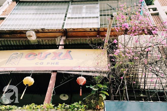 Có một quán cafe trong khu tập thể cũ, khiến ta yêu hơn những ngày Hà Nội thật là thu - Ảnh 3.