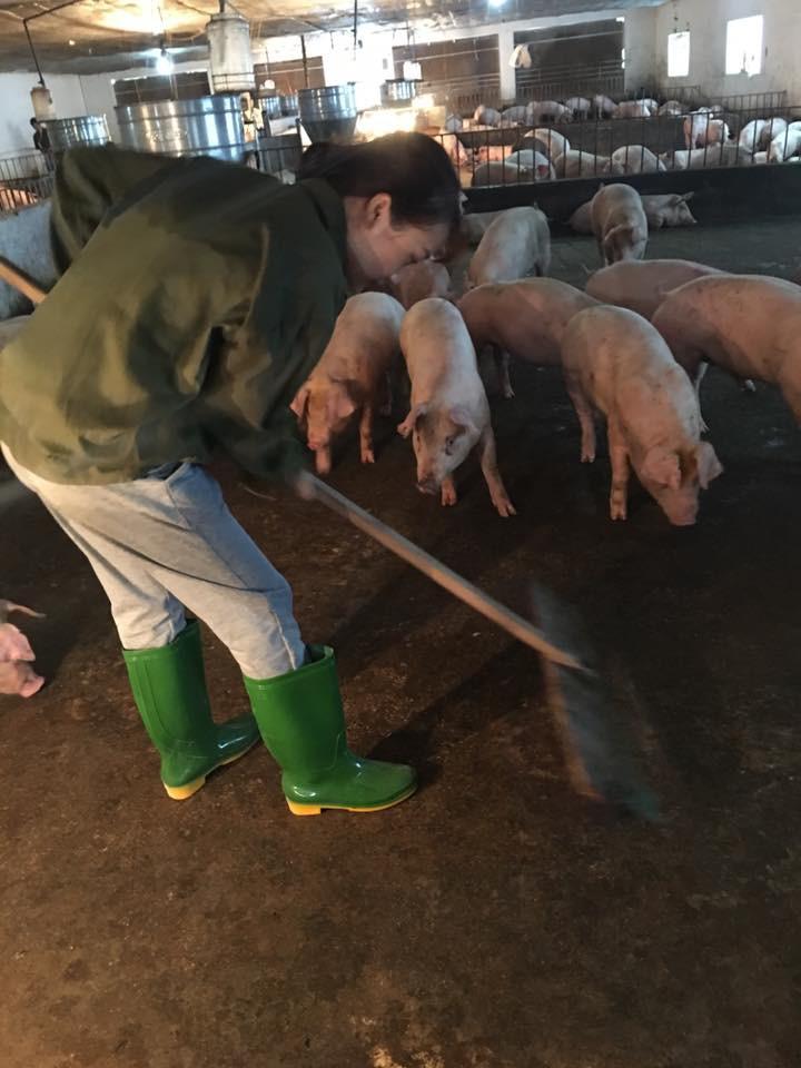 Cô nàng chăn lợn xinh đẹp gây tò mò nhất Facebook hôm nay! - Ảnh 3.