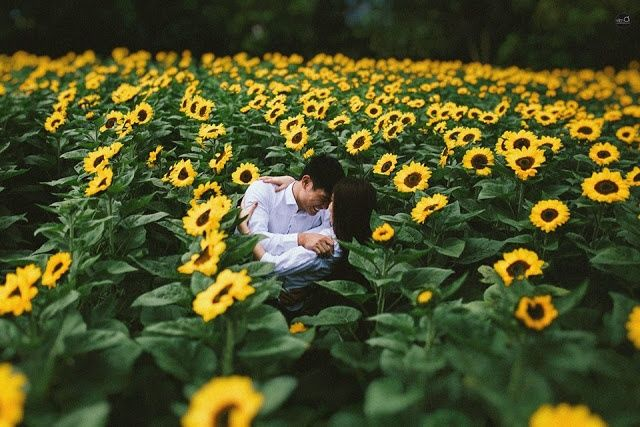 bestie da lat dep ngo ngang qua nhung mua hoa 11