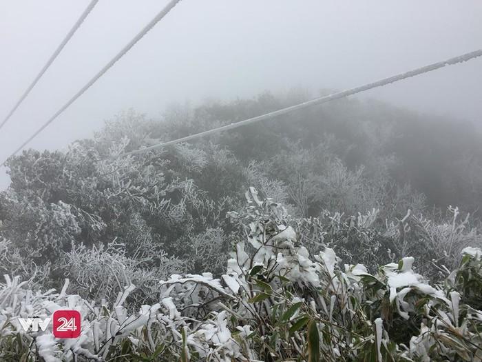 Đường dây cáp dẫn lên đỉnh Fanxipang cũng bị tuyết bao phủ