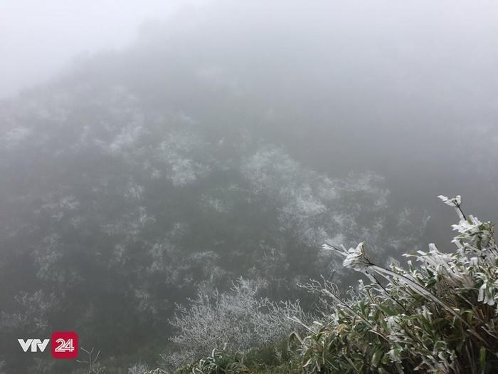 Dự báo trong những ngày tới khu vực này vẫn sẽ tiếp tục có hiện tượng băng giá và tuyết rơi