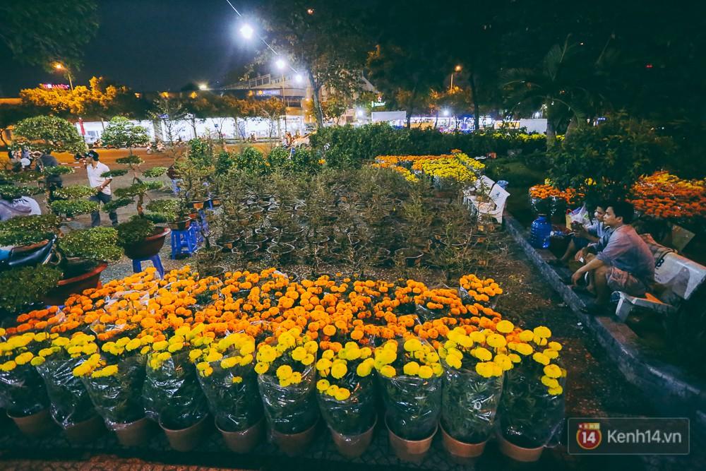 """Người bán hoa Tết nghẹn lòng kể chuyện bị ép giá đêm 30: """"Mong mọi người hãy bỏ tâm lý mua hoa giờ chót - Ảnh 1."""