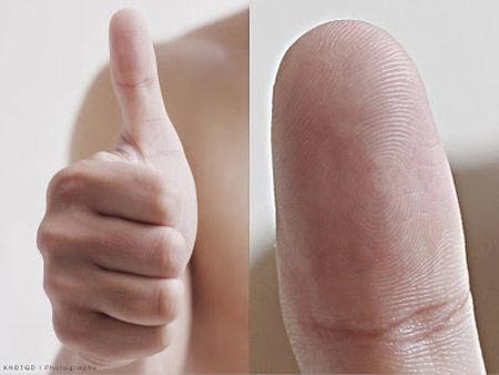 Số lượng hoa tay trên Ngón tay nói gì về con người của bạn