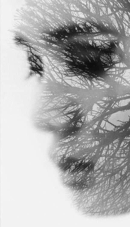 Im lặng là tận cùng của tổn thương