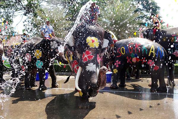 Chùm ảnh ấn tượng tại lễ hội té nước Songkran Thái Lan 11