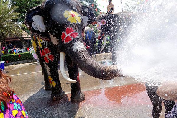Chùm ảnh ấn tượng tại lễ hội té nước Songkran Thái Lan 10