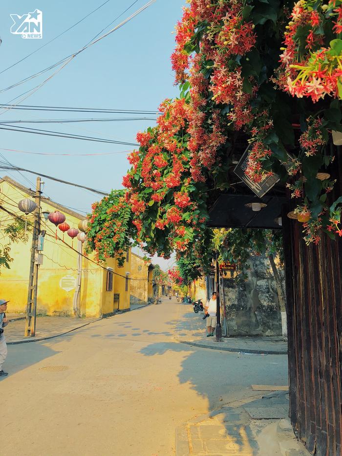 Một trong những điều khiến người ta phải mê Hội An đến thế một phần là nhờ vào các con phố đẹp và thơ mộng thế này.