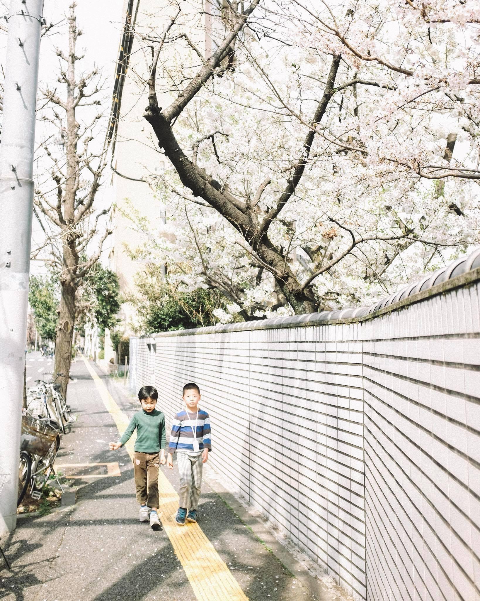 Chẳng ai rời mắt được những bức hình chụp Nhật Bản rất bình yên và trong trẻo của chàng trai Việt Nam này - Ảnh 9.