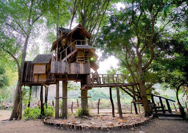Chiang Mai - đi để tận hưởng kỳ nghỉ trên những tán cây - Ảnh 4.