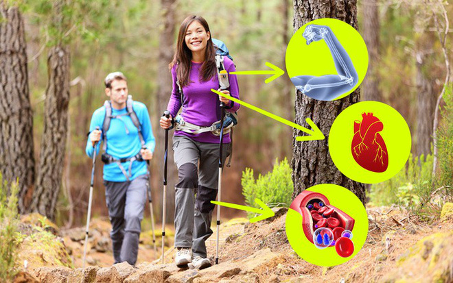 Bất ngờ 8 lợi ích thực sự của việc đi bộ mà chúng ta không bao giờ tưởng tượng ra được - Ảnh 6.