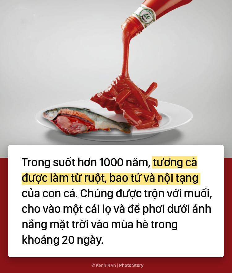 Không phải cà chua, ruột cá mới là nguyên liệu ban đầu của ketchup - Ảnh 3.