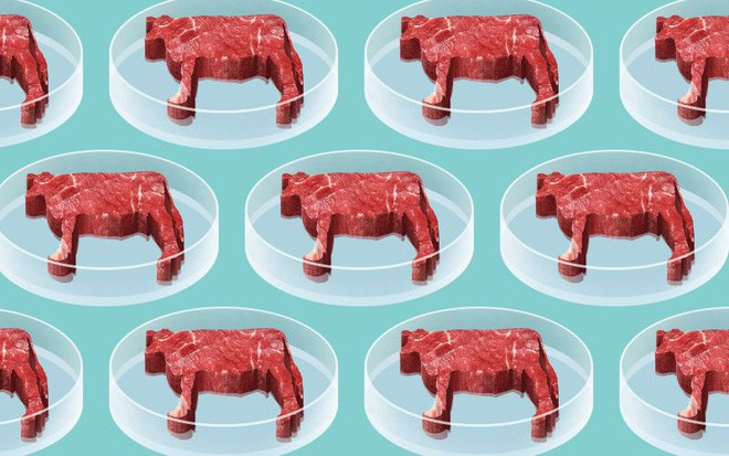 Câu chuyện từ thịt nhân tạo: Liệu sinh học tổng hợp có thay đổi được tương lai của thực phẩm? - Ảnh 3.