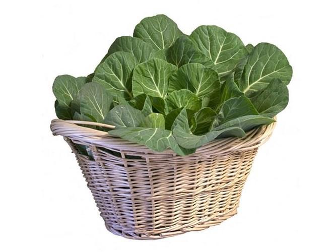 Loại rau có thể cứu sống bạn mà lại dễ dàng tìm mua - Ảnh 4.
