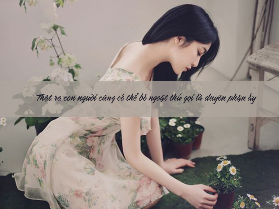 Hạnh phúc hay tan vỡ - lỗi tại duyên phận hay ở lòng người? 3