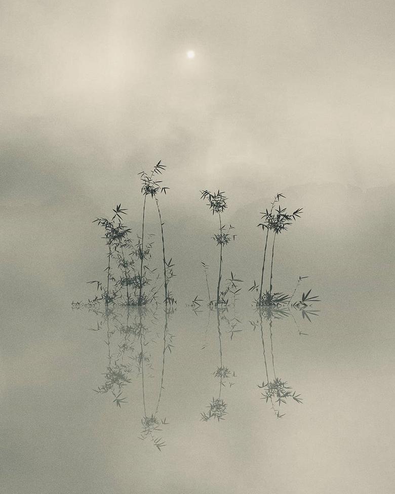 Một tâm hồn tĩnh lặng sẽ luôn luôn tĩnh lặng trong mọi hoàn cảnh.