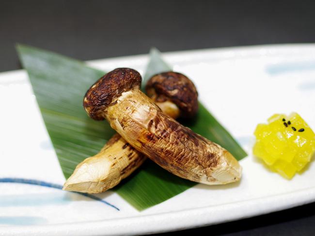 Matsutake - loại nấm đắt nhất thế giới mang trọn vẹn hương vị mùa thu Nhật Bản, từng xuất hiện trong truyện Doraemon có gì đặc biệt? - Ảnh 2.